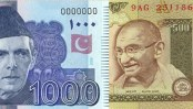 Halvin 10.000 euron vippi